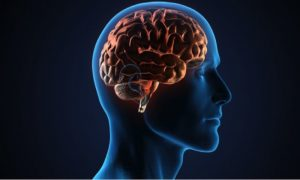 brain stimulation reverse memory loss